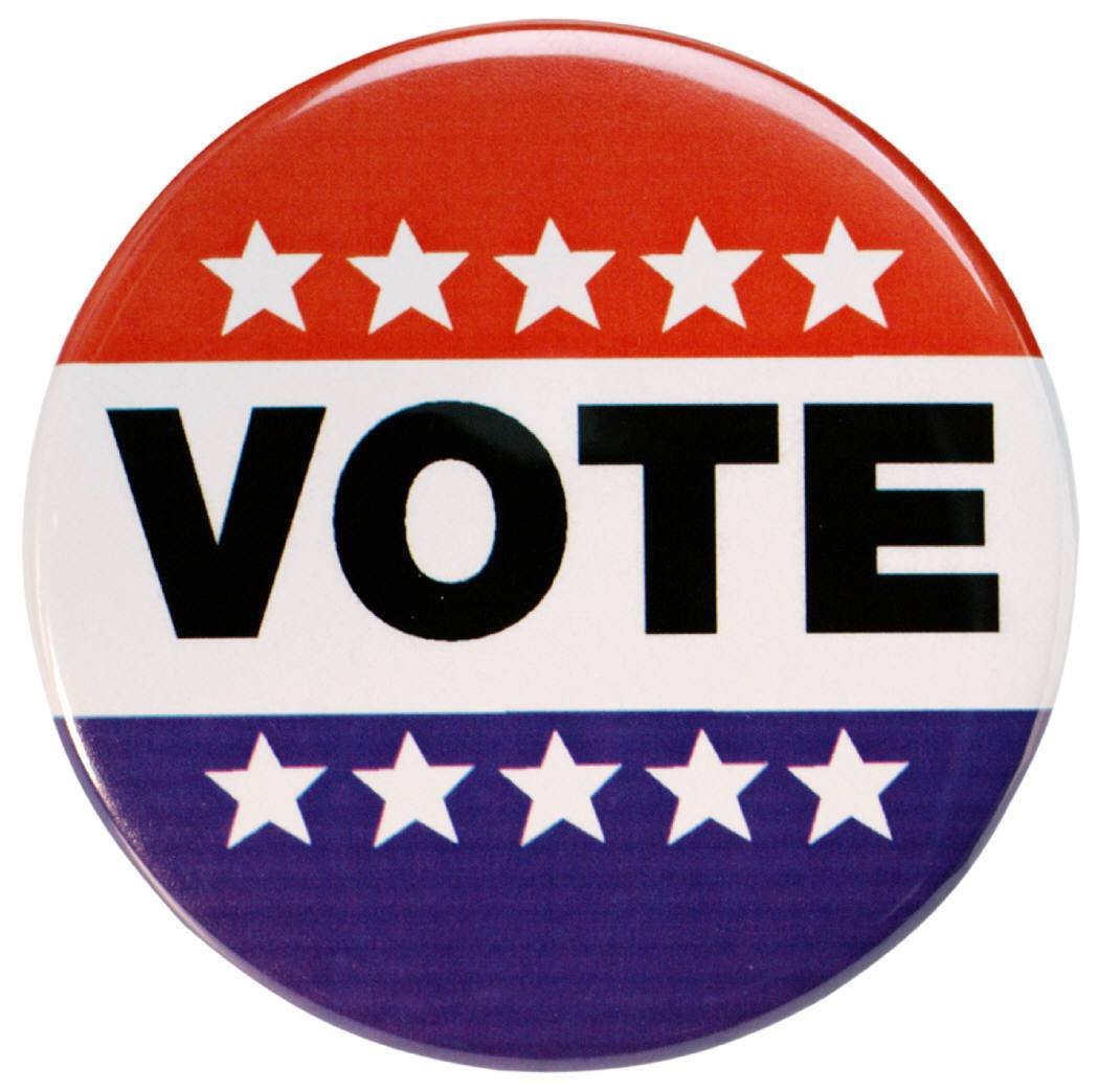 becoming an informed voter Becoming an informed voter researching your congressional delegation (research paper sample.