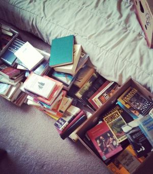 The Great Book Purge of 2013