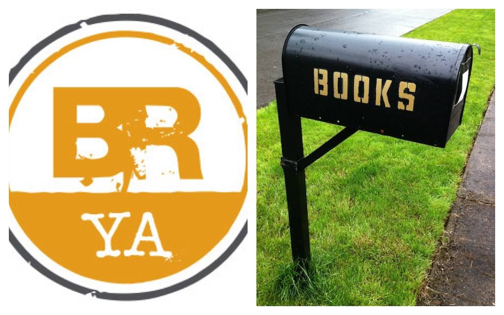 Book Riot YA Quarterly Box