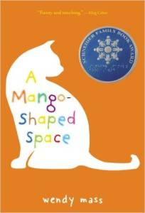A Mango-Shaped Space by Wendy Mass cover