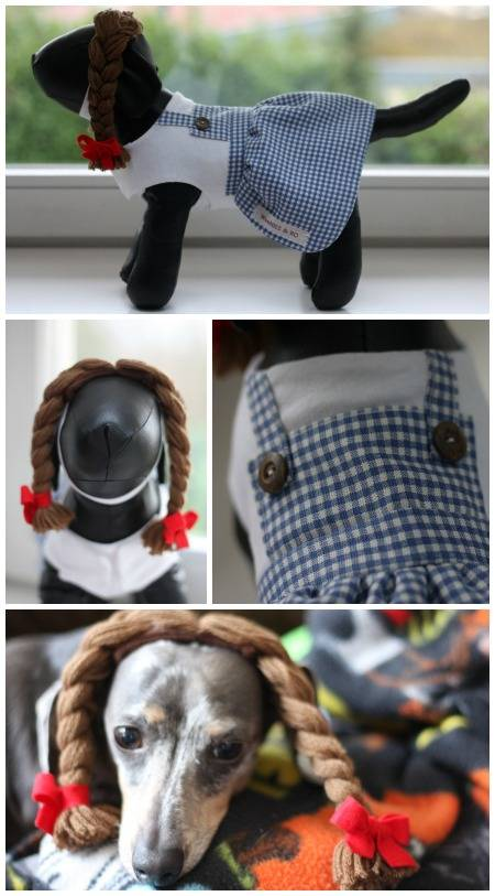 The perfect pet costume to dress your dog as Dorothy from the Wizard of Oz - complete with braids.