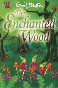 The Enchanted Wood book cover