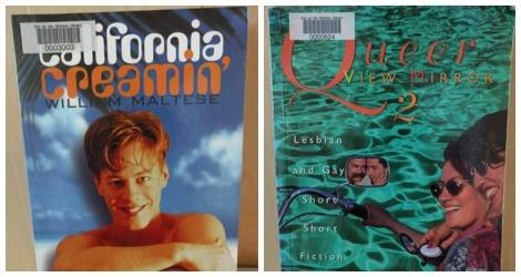 We've Come a Long Way, Baby: 10 Hilarious 90s Gay Book Covers