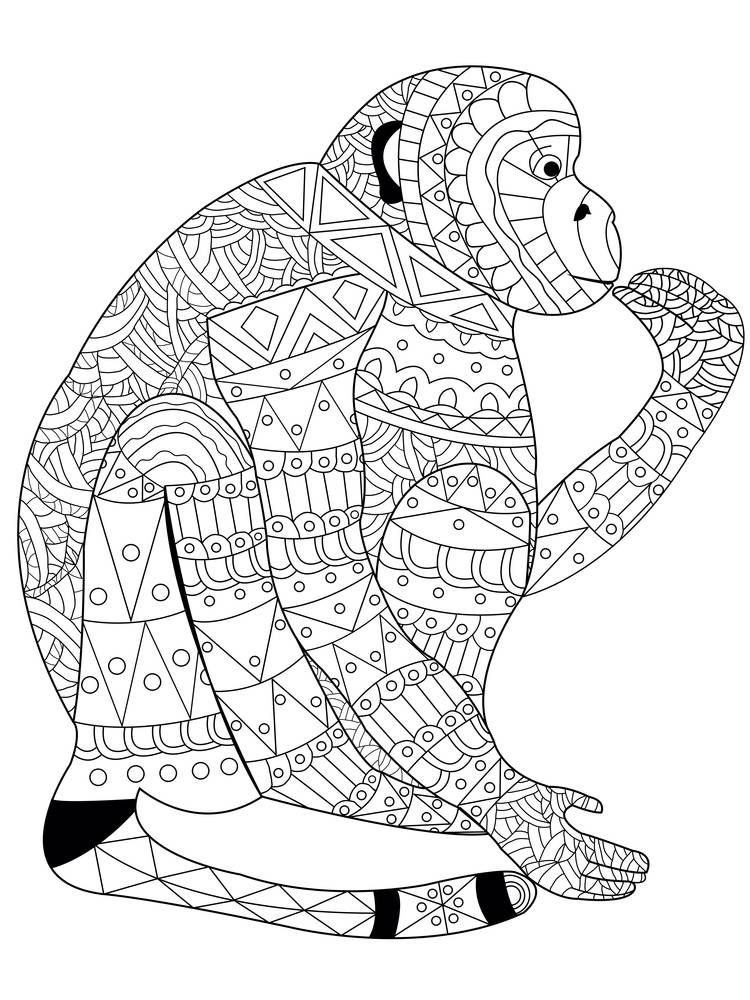 Monkey coloring book for adults vector illustration. Anti-stress coloring for adult. Zentangle style. Black and white. Lace pattern jocko