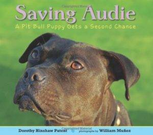 Saving Audie - on adopting a dog