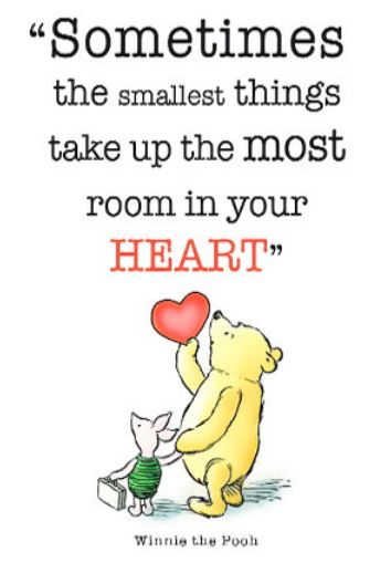 35 winnie the pooh quotes for every facet of life. Black Bedroom Furniture Sets. Home Design Ideas