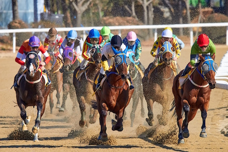 Books About the Kentucky Derby (Plus Some Fun Facts About