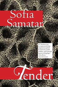 Dystopian short stories: Book cover of Tender by Sofia Samatar