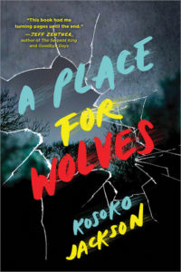 A Place for Wolves from Most Anticipated 2019 LGBTQ Reads   bookriot.com