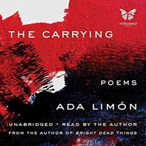 the carrying book cover