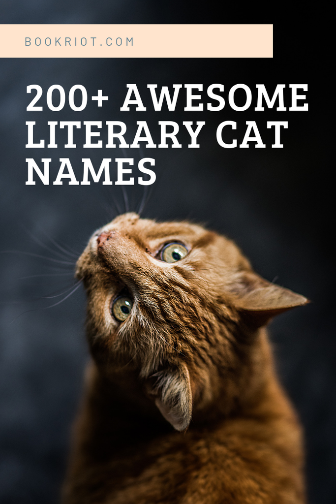 The ultimate guide to over 200 literary cat names, including cat name ideas from books, comics, children's books, and more. names for cats | cat names | literary cat names | bookish names for cats | comics names for kids | names for cats based on books