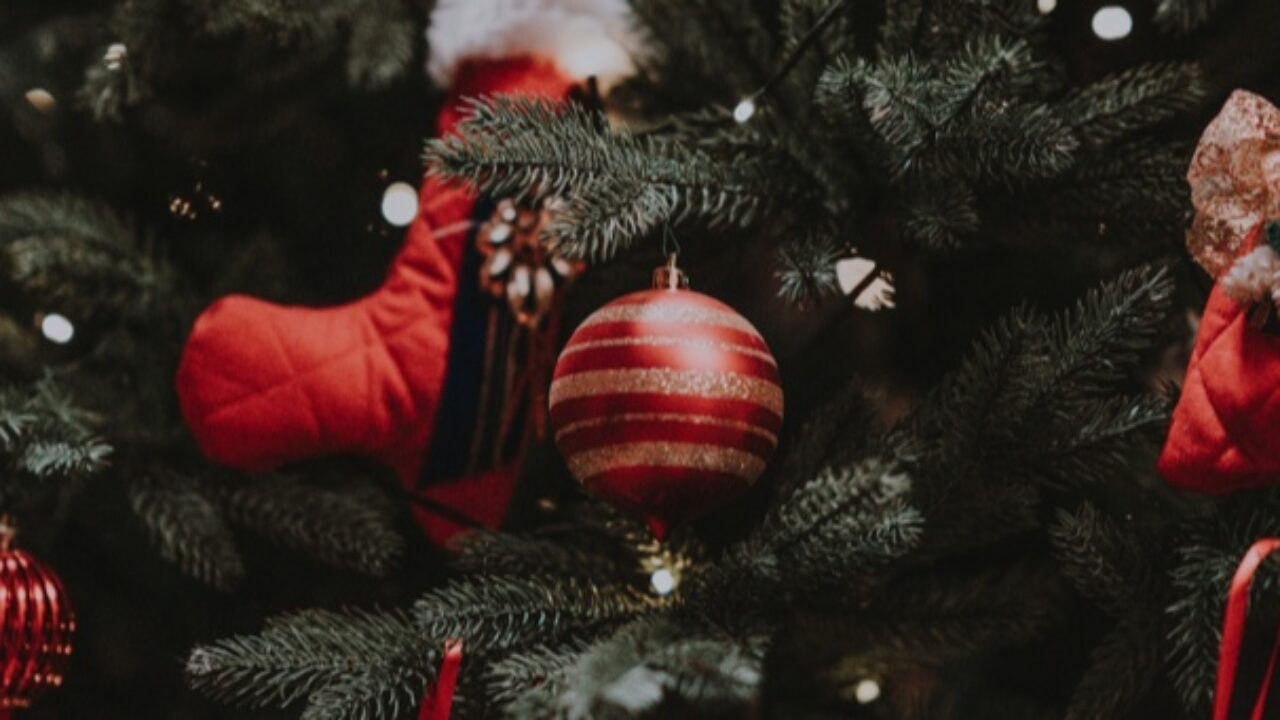 12 Days of the Best Christmas Quotes for the Holidays| Book Riot