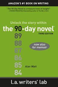 90 Day Novel cover